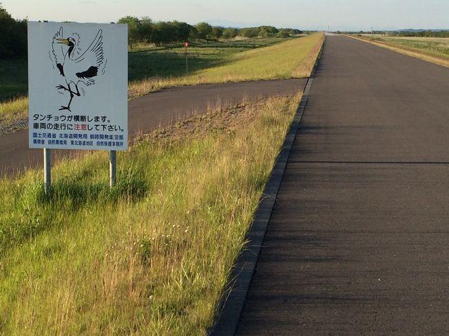 新釧路川河川敷ポタ_a0156548_2253457.jpg