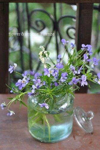 *ご結婚記念日の花束~♪*_e0159050_119621.jpg