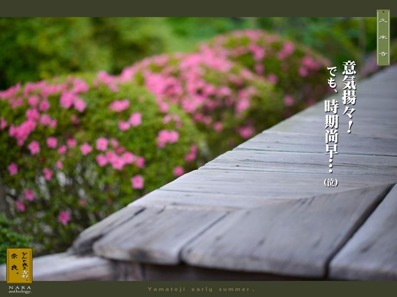c0156854_20321685.jpg