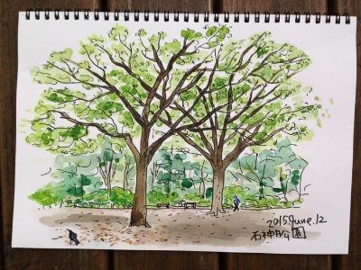 石神井公園スケッチ_f0072976_20203273.jpg