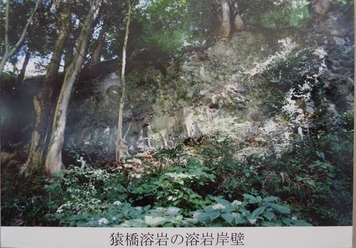 6月10日猿橋と岩殿山の下見_e0145782_18495081.jpg