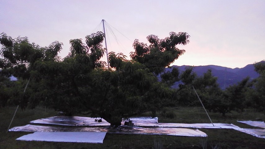 日が沈む時間帯_f0325525_14000499.jpg
