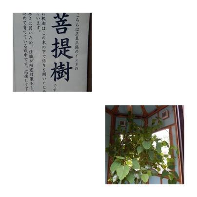f0031546_23504247.jpg