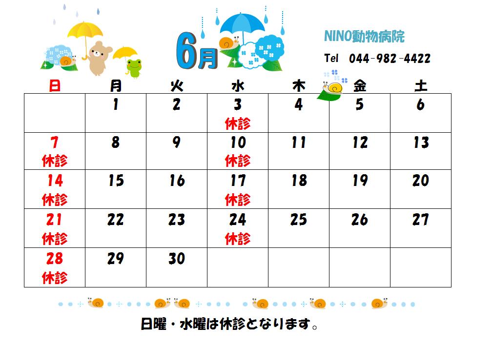6月の診療日のお知らせ☆_e0288670_9171335.png