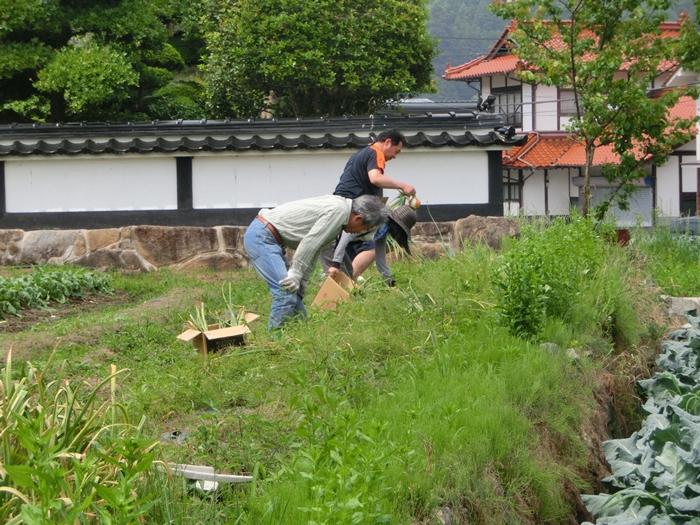 草刈り隊集合日_a0199979_20455551.jpg