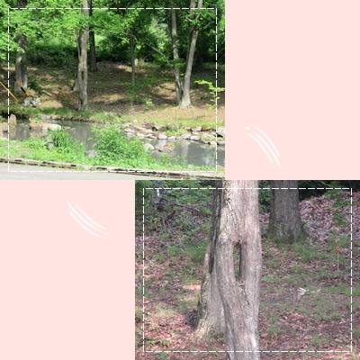 b0167519_1746377.jpg