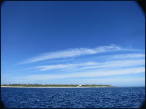 6月14日夏の水納島ダイビング!!_c0070933_22501736.jpg