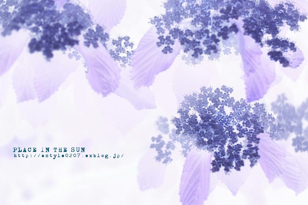 f0310867_09254033.jpg