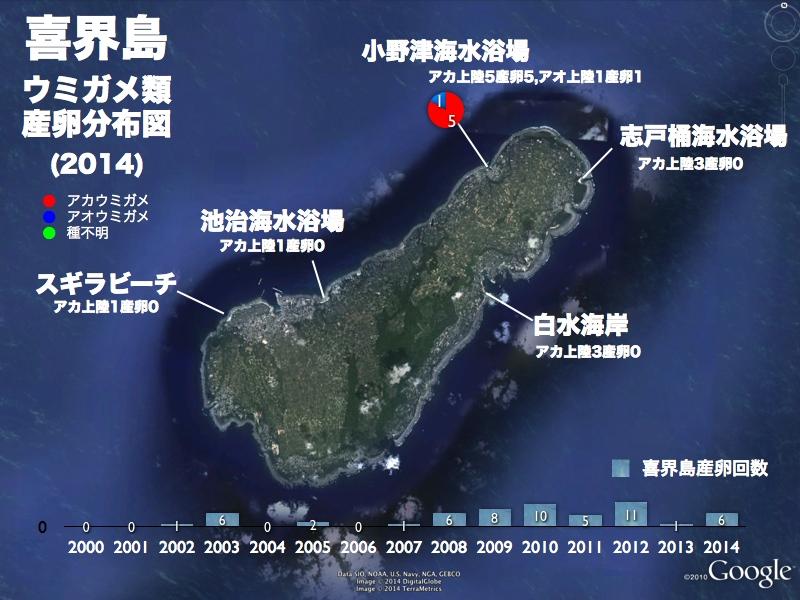 6/13 喜界島ウミガメミーティング_a0010095_19401487.jpg