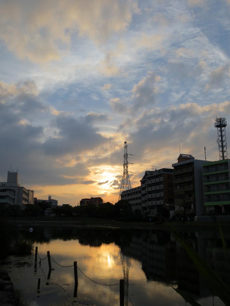 d0190217_165336.jpg