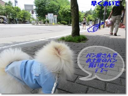 b0167519_1834472.jpg