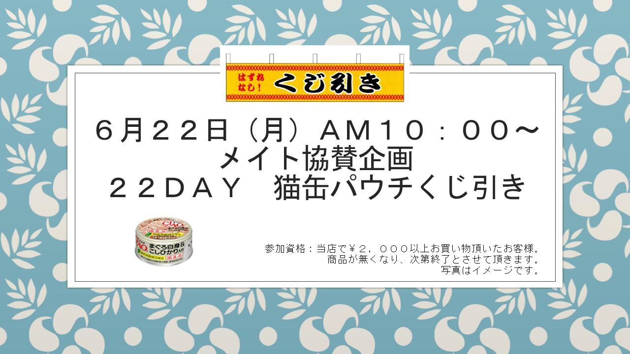 20150615 花金セール&イベント告知_e0181866_1027343.jpg