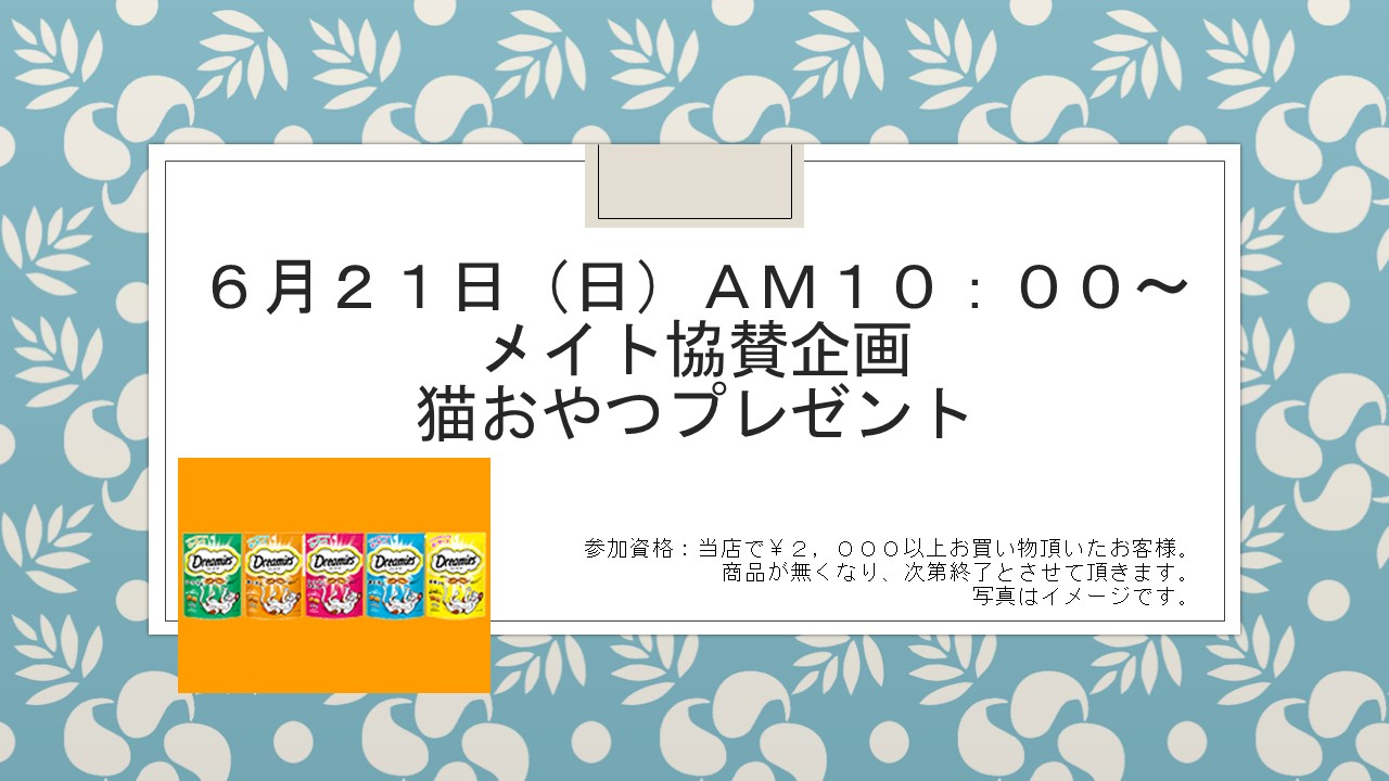 20150615 花金セール&イベント告知_e0181866_1074865.jpg