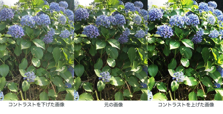 f0253789_17583209.jpg