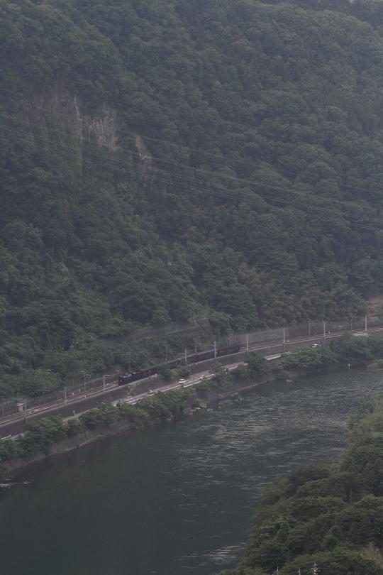 緑の風景と焦げ茶色の汽車 - 2015年初夏・上越線 -  _b0190710_23192711.jpg