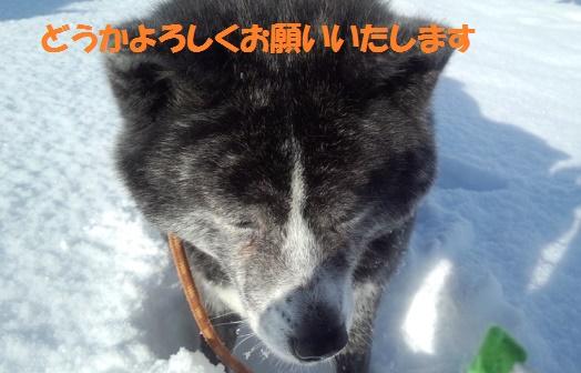 f0121712_1446558.jpg