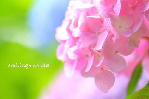 f0336020_06391324.jpg