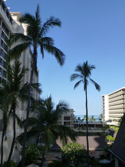 Hawaii 旅行記 ホテル編_e0237625_15463780.jpg