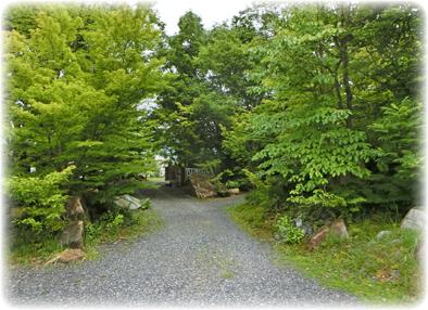 自然の流れに乗せた庭_f0045132_8515330.jpg