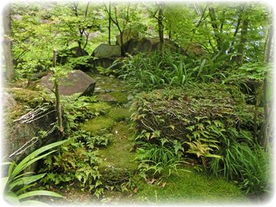自然の流れに乗せた庭_f0045132_8524215.jpg