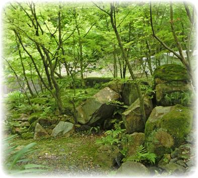 自然の流れに乗せた庭_f0045132_853198.jpg