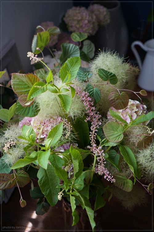 Bouquet champetre d'hortensia_f0151946_045552.jpg