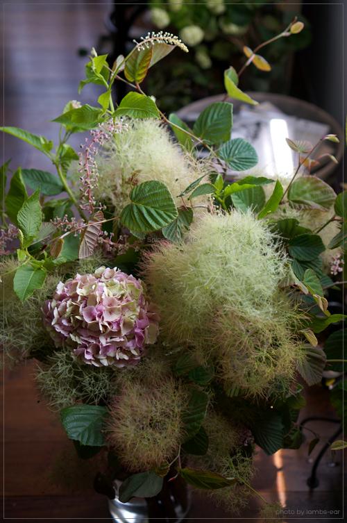Bouquet champetre d'hortensia_f0151946_05231.jpg