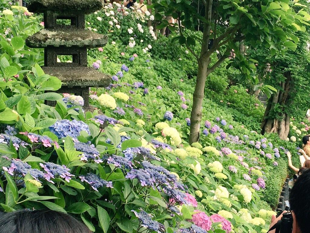 鎌倉巡り。_a0157480_13490119.jpg