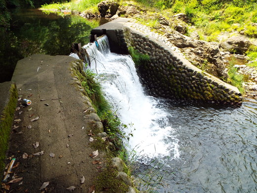 6月15日 高尾・南浅川の滝_e0145782_1242125.jpg