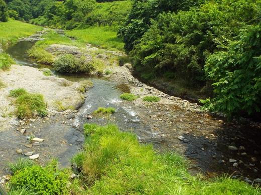 6月15日 高尾・南浅川の滝_e0145782_12435316.jpg