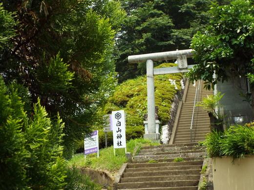 6月15日 高尾・南浅川の滝_e0145782_1246243.jpg