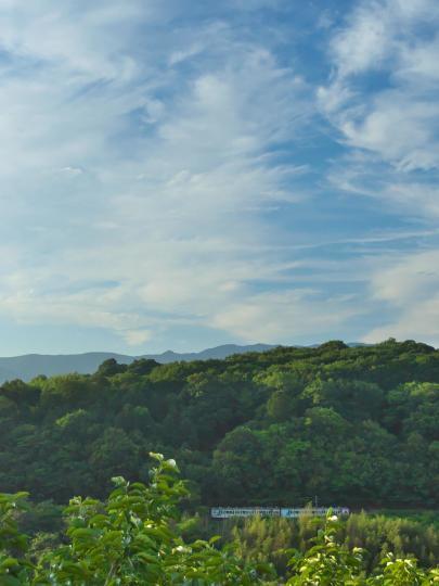 山沿いを行く和歌山線_f0266284_00104938.jpg