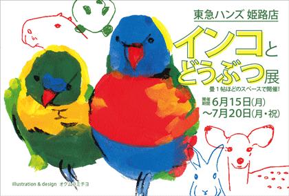 東急ハンズ姫路店「インコとどうぶつ展」