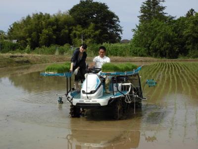 かがみいし田んぼアート 田植祭りの前に農作業だ!_e0140921_22161443.jpg