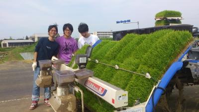 かがみいし田んぼアート 田植祭りの前に農作業だ!_e0140921_22235189.jpg