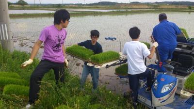 かがみいし田んぼアート 田植祭りの前に農作業だ!_e0140921_2223676.jpg