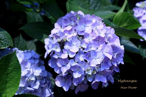 b0328557_19420241.jpg