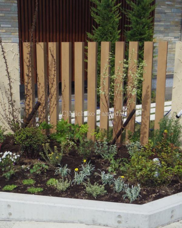 宿根草と低木の花壇植栽_a0139105_20233941.jpg