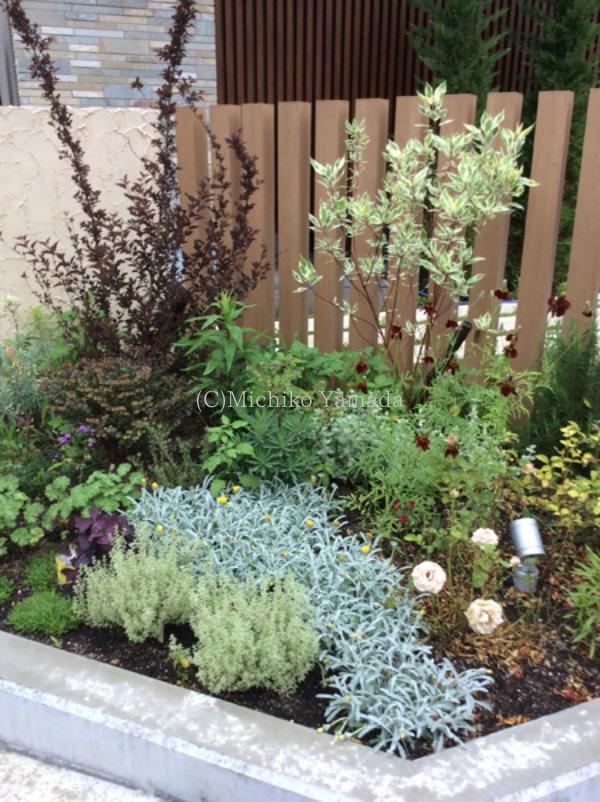 宿根草と低木の花壇植栽_a0139105_20295926.jpg