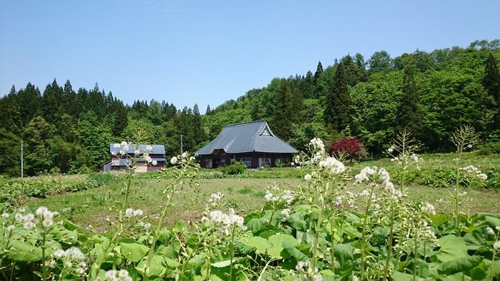西和賀町鷲之巣をお散歩_d0206420_16285722.jpg
