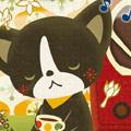 6/19~7/1 mizuka 個展『mizukaのなんでも展』開催のお知らせ_f0010033_20185641.jpg