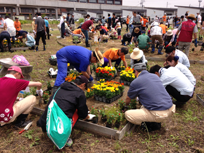 「母の日キャンペーン」の御支援で、被災地に花壇を作りました。_e0105047_15595912.jpg