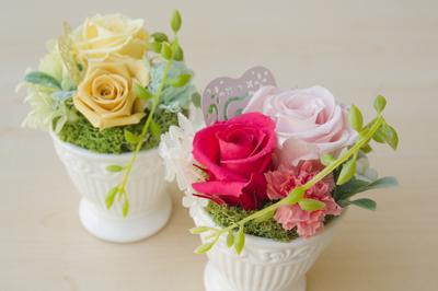 「母の日キャンペーン」の御支援で、被災地に花壇を作りました。_e0105047_1644572.jpg