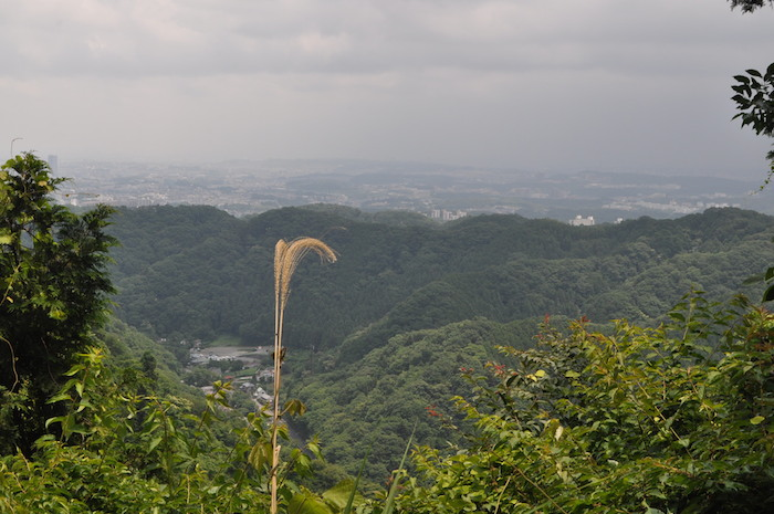 高尾山を攻略する_b0067012_1575996.jpg