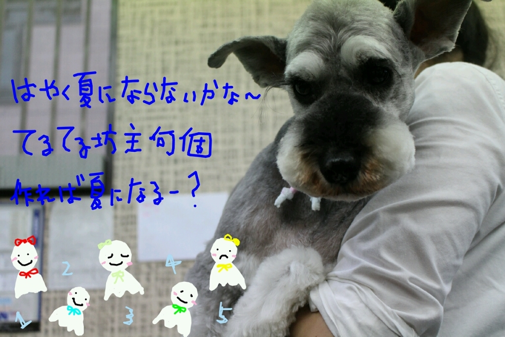 b0130018_09345032.jpg