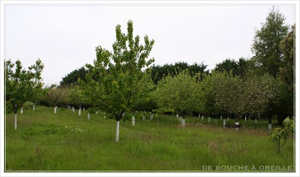 Le Château Richeux : mai 2015 シャトーリシュー その1 お宿篇_d0184921_143302.jpg
