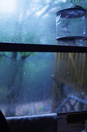 雨の中_c0369344_15323684.jpg