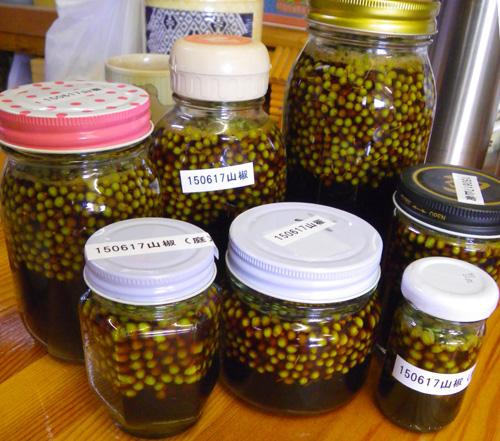 山椒の実とドクダミの採取など♪_a0136293_1932860.jpg