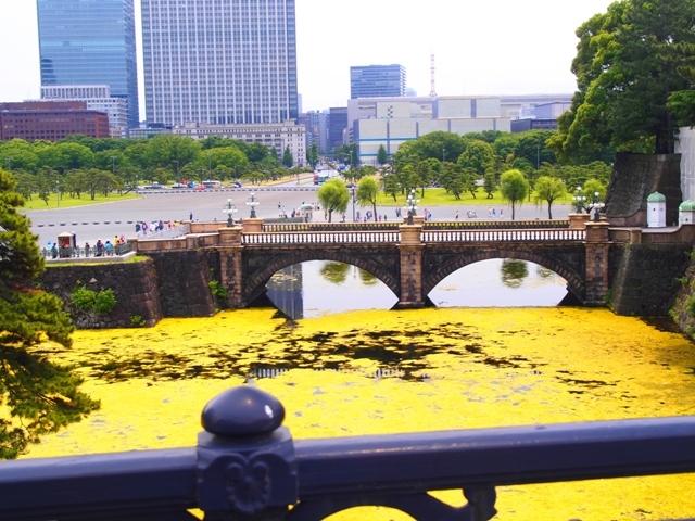 東京・横浜・日光のただ旅行 ⑧_b0292900_11201837.jpg