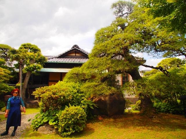 東京・横浜・日光のただ旅行 ⑩_b0292900_22363273.jpg